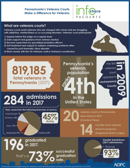 Pennsylvanias Veterans Courts Make a Difference for Veterans - 007384